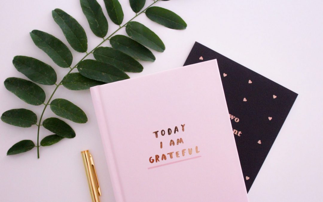 2 gratitude journals with green leaf